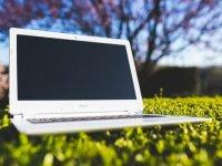 nature-laptop-notebook-grass-medium